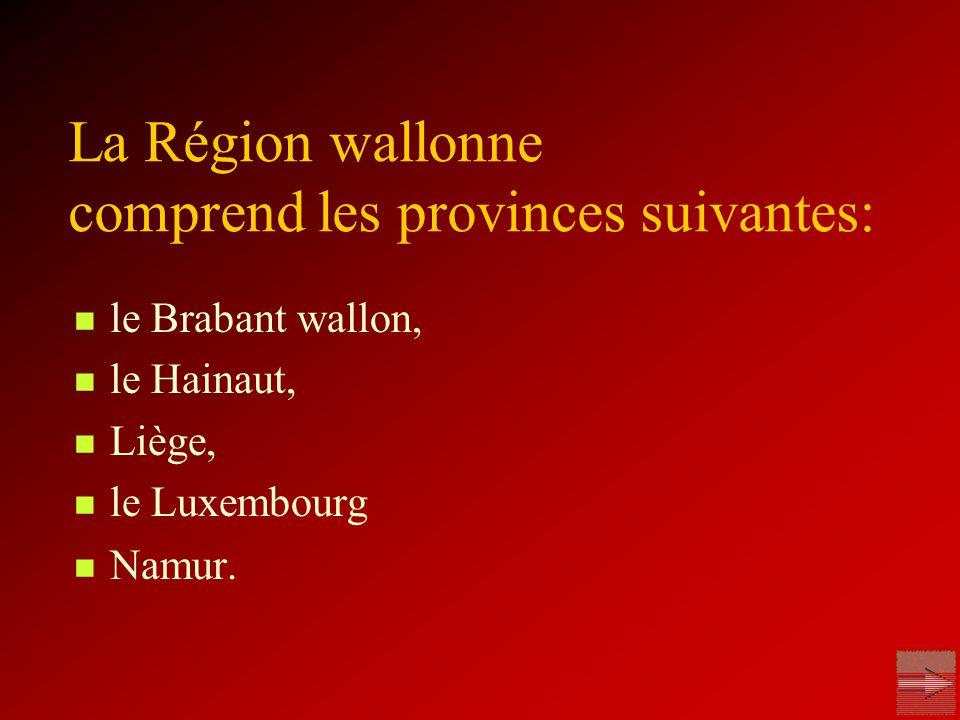 le Brabant wallon, le Hainaut, Liège, le Luxembourg Namur. La Région wallonne comprend les provinces suivantes: