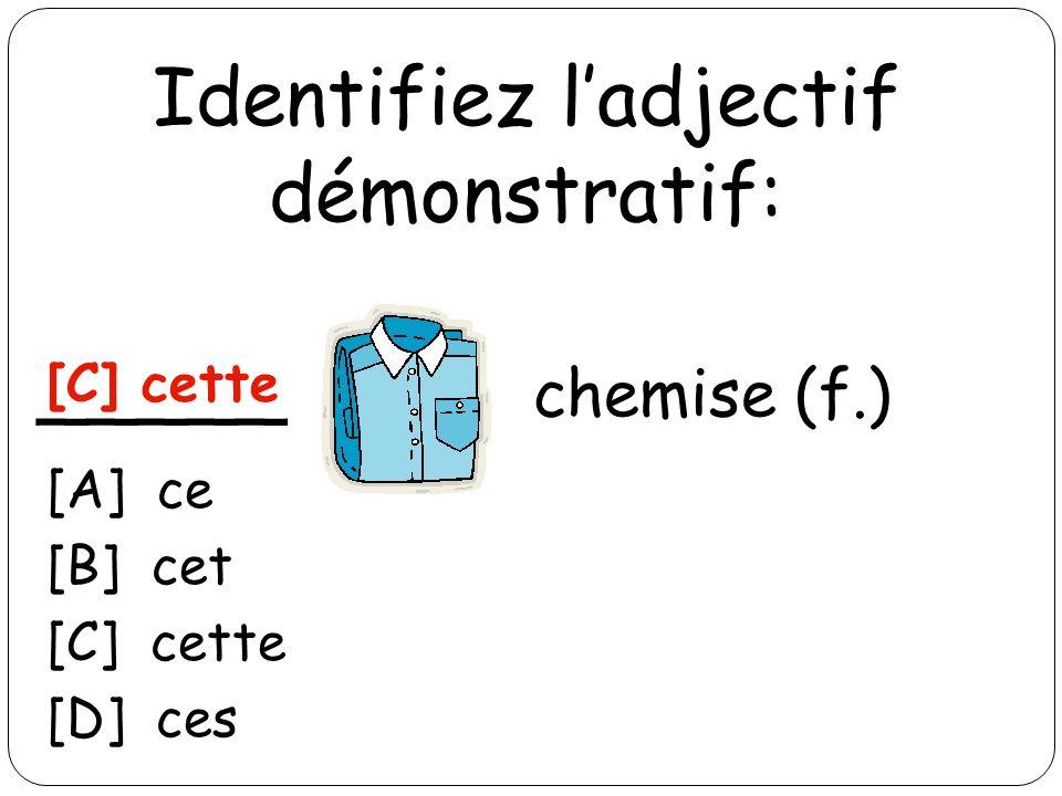 Identifiez ladjectif démonstratif: _____ chemise (f.) [C] cette [A] ce [B] cet [C] cette [D] ces