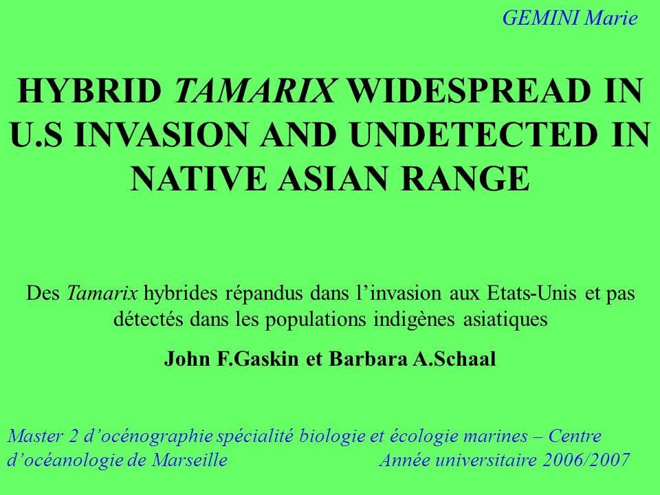 HYBRID TAMARIX WIDESPREAD IN U.S INVASION AND UNDETECTED IN NATIVE ASIAN RANGE Des Tamarix hybrides répandus dans linvasion aux Etats-Unis et pas déte