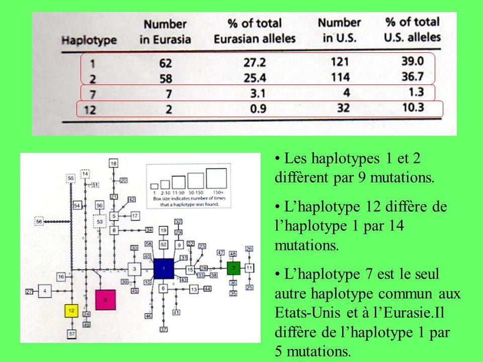 Les haplotypes 1 et 2 diffèrent par 9 mutations. Lhaplotype 12 diffère de lhaplotype 1 par 14 mutations. Lhaplotype 7 est le seul autre haplotype comm