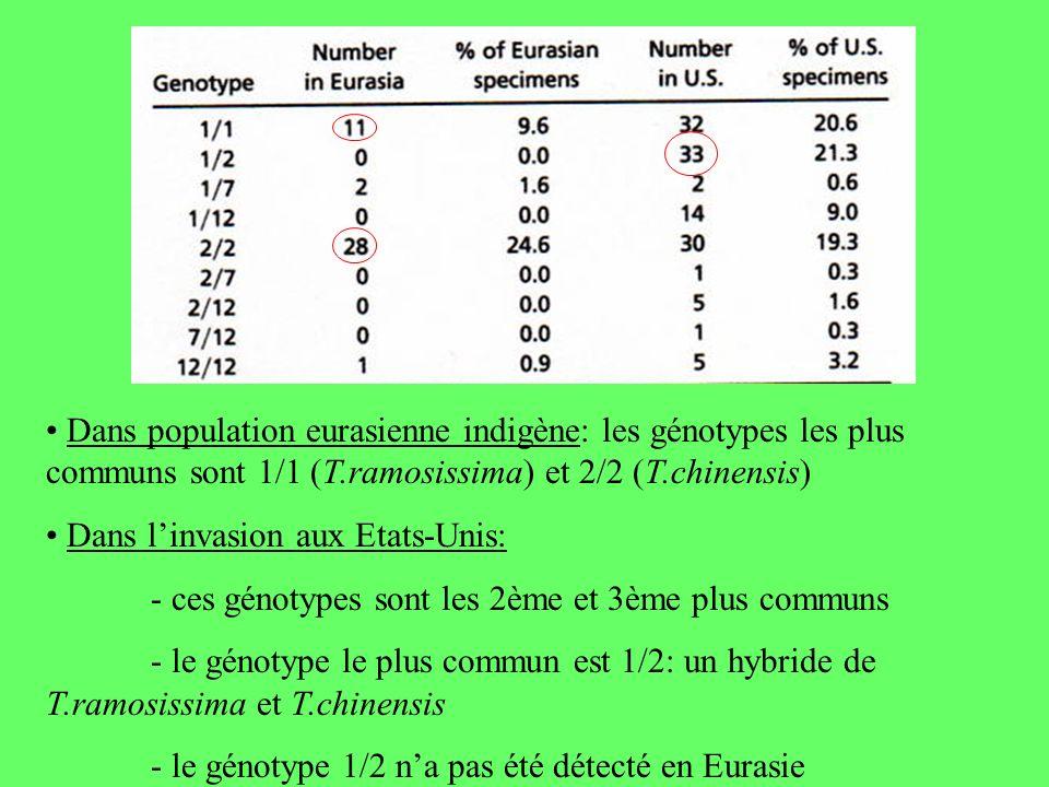 Dans population eurasienne indigène: les génotypes les plus communs sont 1/1 (T.ramosissima) et 2/2 (T.chinensis) Dans linvasion aux Etats-Unis: - ces