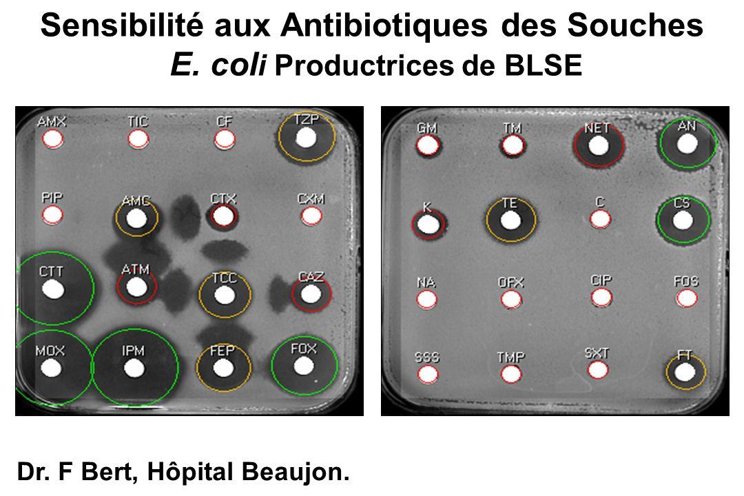 Sensibilité aux Antibiotiques des Souches E. col i Productrices de BLSE Dr. F Bert, Hôpital Beaujon.