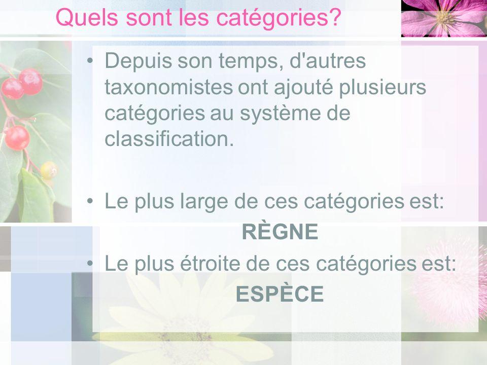 Quels sont les catégories? Depuis son temps, d'autres taxonomistes ont ajouté plusieurs catégories au système de classification. Le plus large de ces