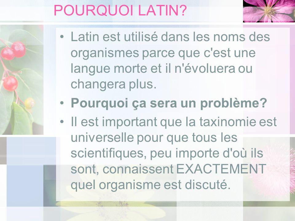 POURQUOI LATIN? Latin est utilisé dans les noms des organismes parce que c'est une langue morte et il n'évoluera ou changera plus. Pourquoi ça sera un