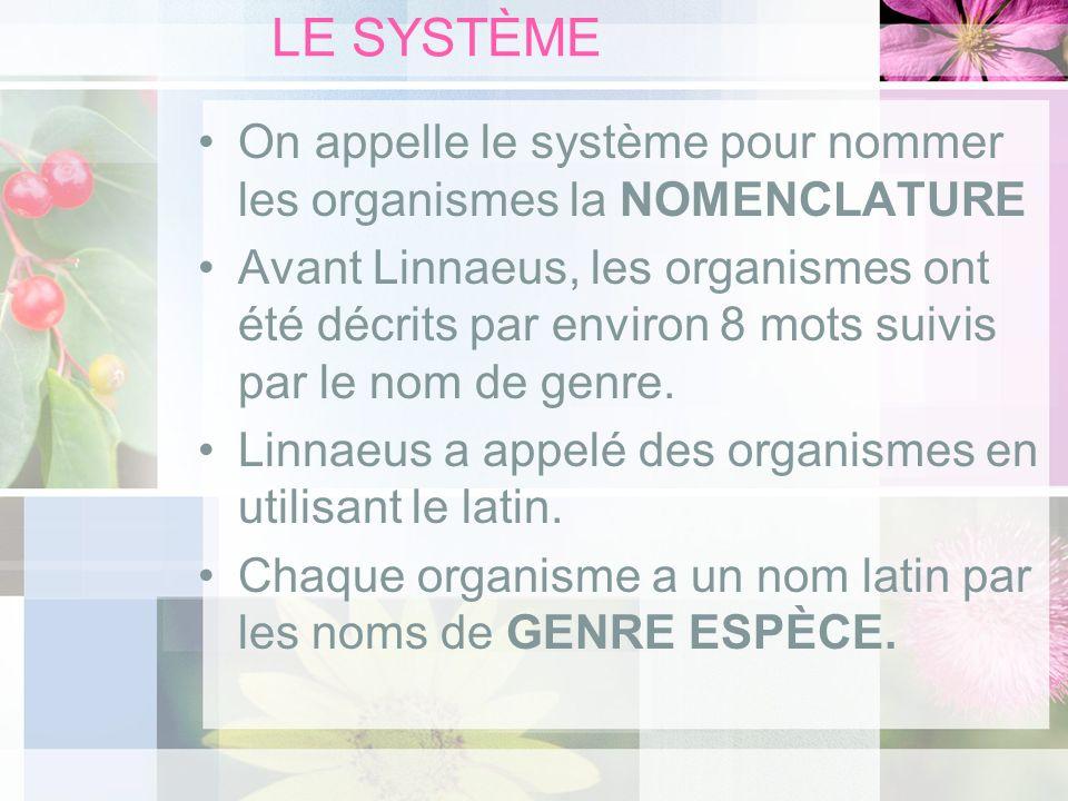 LE SYSTÈME On appelle le système pour nommer les organismes la NOMENCLATURE Avant Linnaeus, les organismes ont été décrits par environ 8 mots suivis p