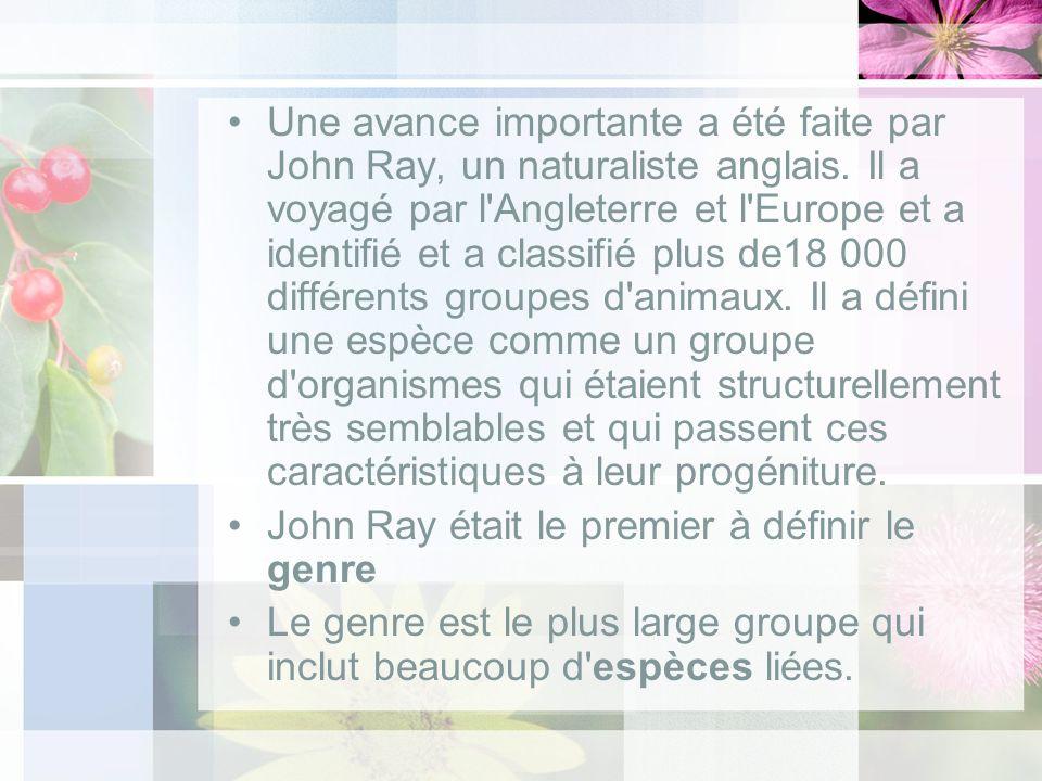 Une avance importante a été faite par John Ray, un naturaliste anglais. Il a voyagé par l'Angleterre et l'Europe et a identifié et a classifié plus de