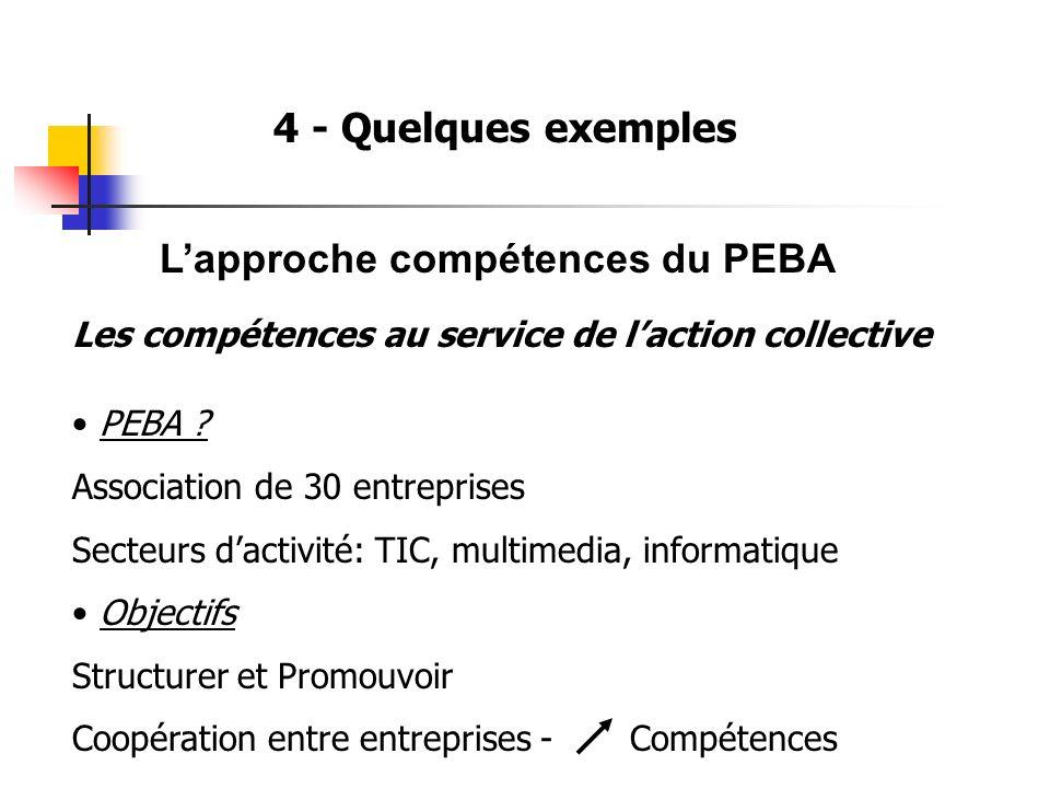 4 - Quelques exemples Lapproche compétences du PEBA Les compétences au service de laction collective PEBA ? Association de 30 entreprises Secteurs dac