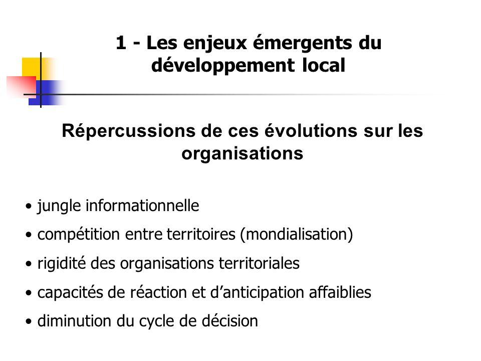 1 - Les enjeux émergents du développement local Répercussions de ces évolutions sur les organisations jungle informationnelle compétition entre territ