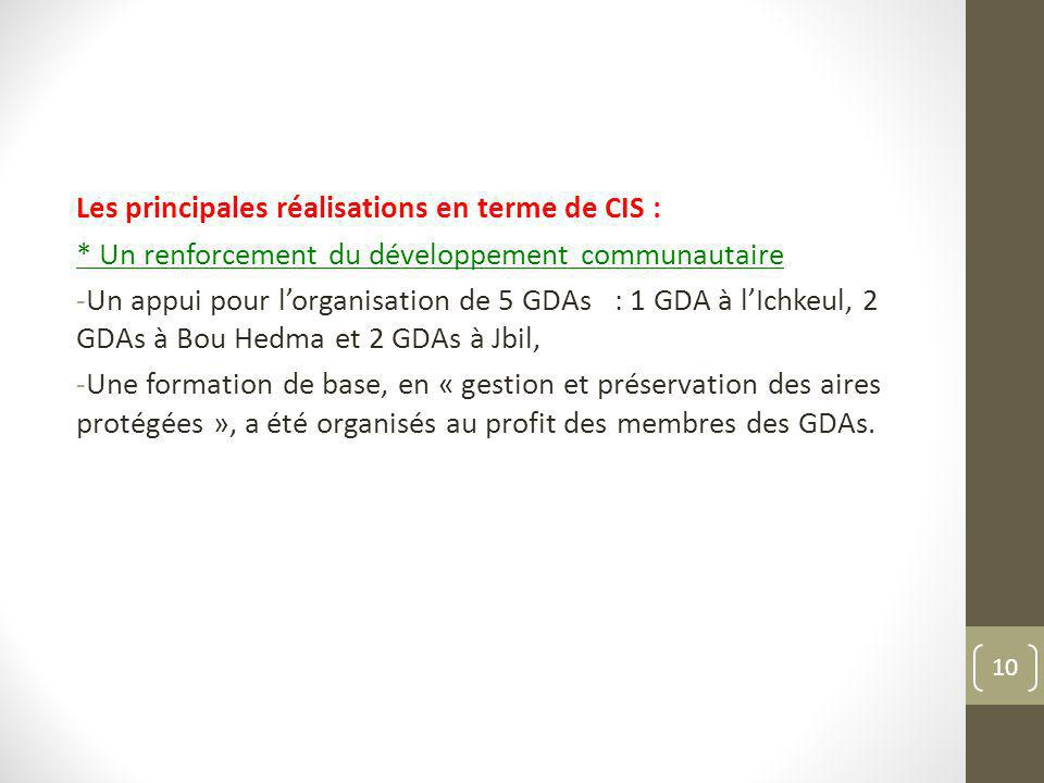 Les principales réalisations en terme de CIS : * Un renforcement du développement communautaire -Un appui pour lorganisation de 5 GDAs : 1 GDA à lIchk