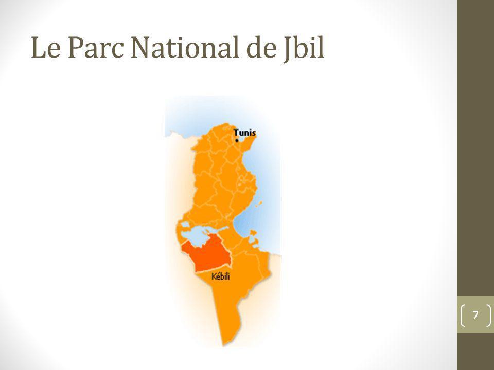 Le Parc National de Jbil 7