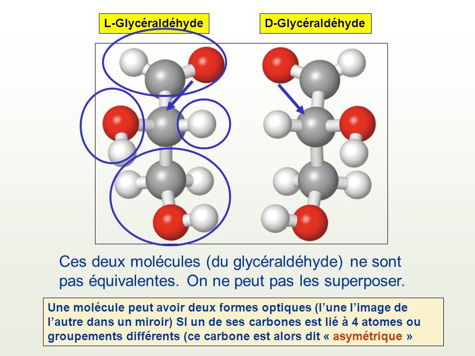Ces deux molécules (du glycéraldéhyde) ne sont pas équivalentes. On ne peut pas les superposer. D-GlycéraldéhydeL-Glycéraldéhyde Une molécule peut avo
