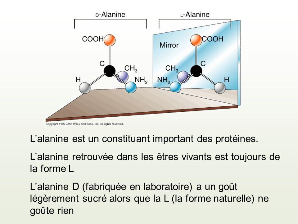 Lalanine est un constituant important des protéines. Lalanine retrouvée dans les êtres vivants est toujours de la forme L Lalanine D (fabriquée en lab