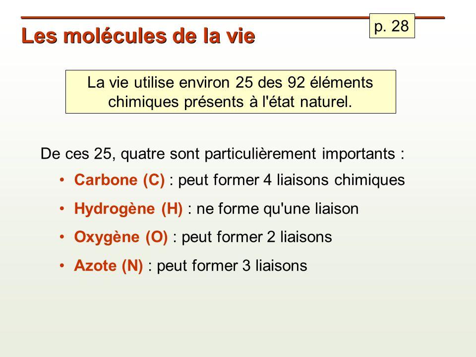 Les molécules de la vie De ces 25, quatre sont particulièrement importants : Carbone (C) : peut former 4 liaisons chimiques Hydrogène (H) : ne forme qu une liaison Oxygène (O) : peut former 2 liaisons Azote (N) : peut former 3 liaisons La vie utilise environ 25 des 92 éléments chimiques présents à l état naturel.