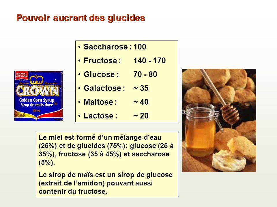 Pouvoir sucrant des glucides Saccharose :100 Fructose : 140 - 170 Glucose : 70 - 80 Galactose :~ 35 Maltose :~ 40 Lactose : ~ 20 Le miel est formé d un mélange d eau (25%) et de glucides (75%): glucose (25 à 35%), fructose (35 à 45%) et saccharose (5%).