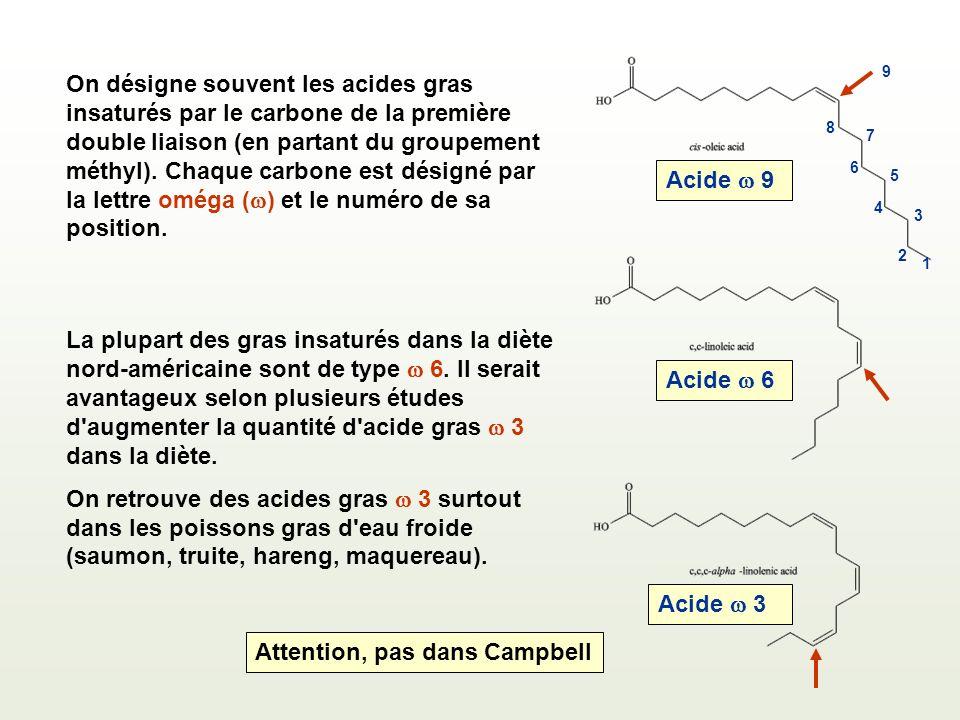 On désigne souvent les acides gras insaturés par le carbone de la première double liaison (en partant du groupement méthyl).