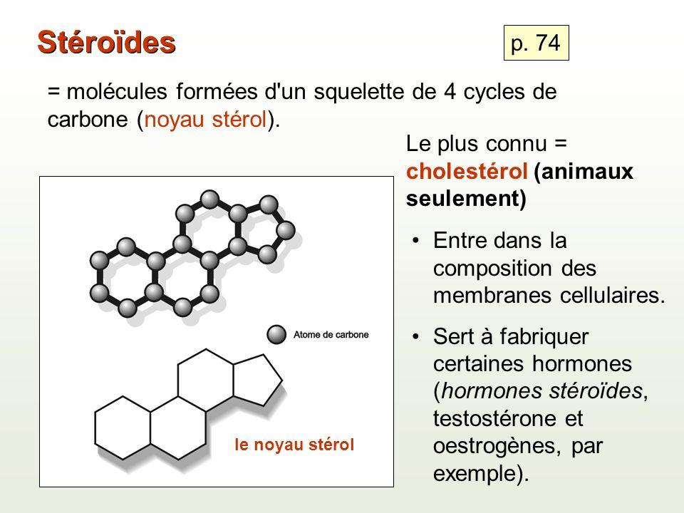 = molécules formées d un squelette de 4 cycles de carbone (noyau stérol).