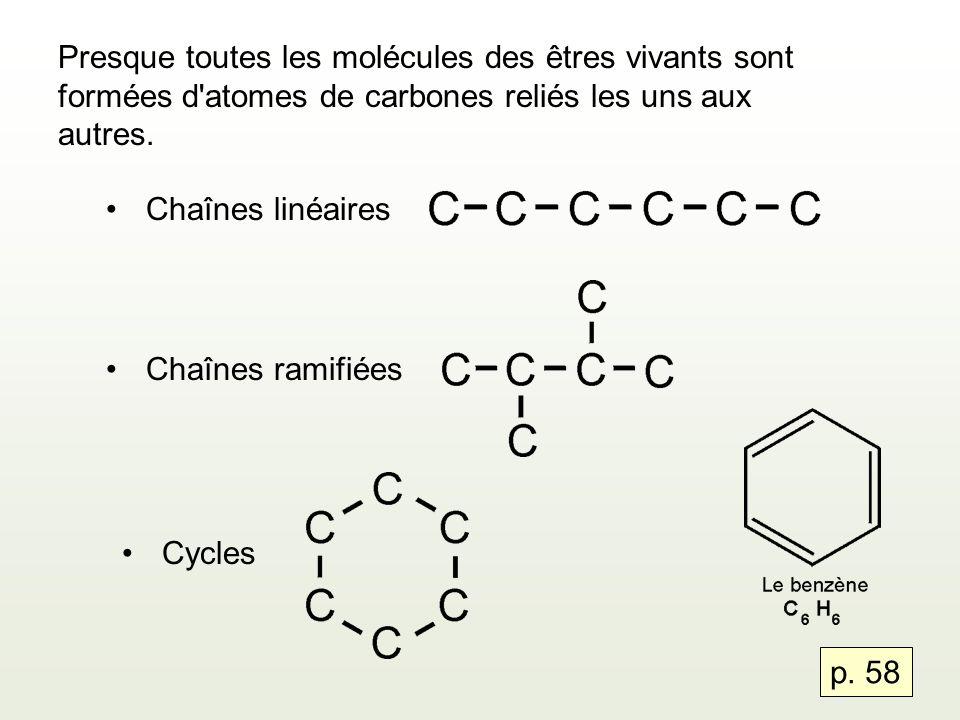 Presque toutes les molécules des êtres vivants sont formées d'atomes de carbones reliés les uns aux autres. Chaînes linéaires Chaînes ramifiées Cycles