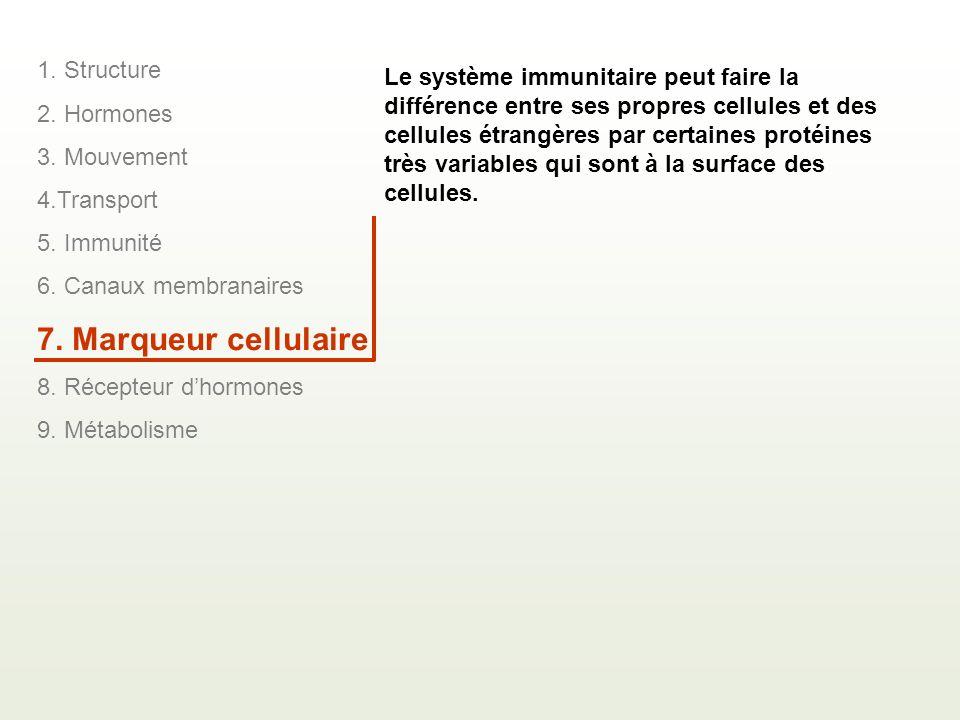 1. Structure 2. Hormones 3. Mouvement 4.Transport 5. Immunité 6. Canaux membranaires 7. Marqueur cellulaire 8. Récepteur dhormones 9. Métabolisme Le s