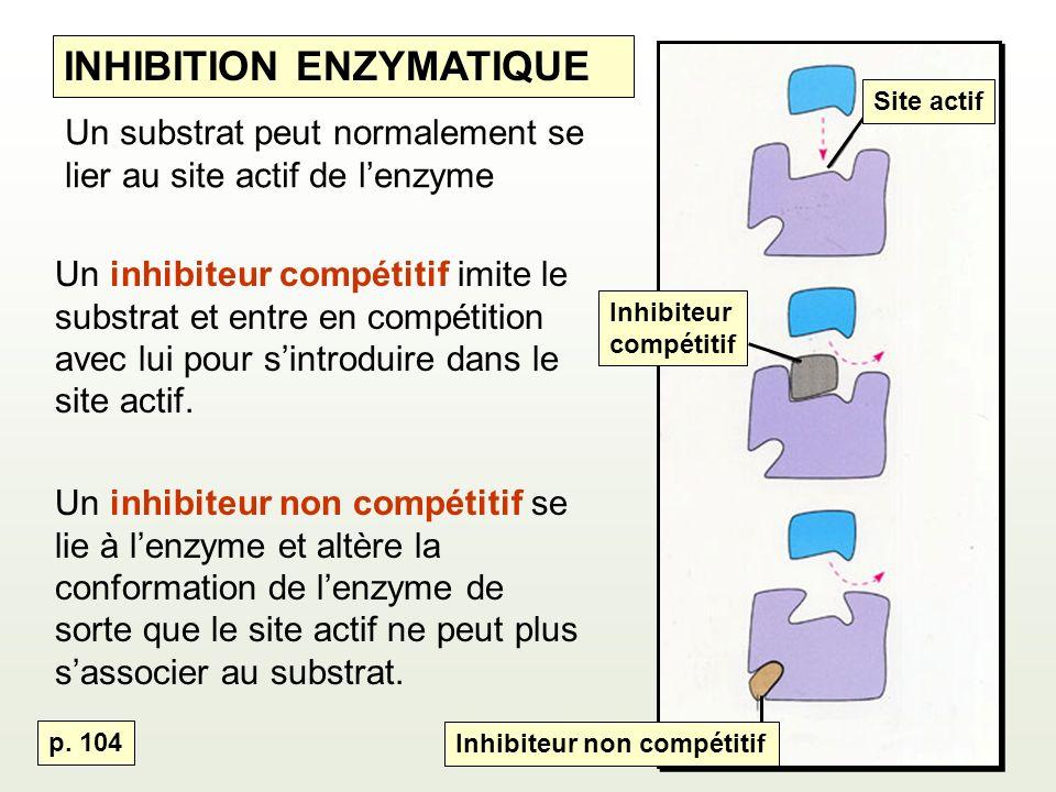 Un substrat peut normalement se lier au site actif de lenzyme Un inhibiteur compétitif imite le substrat et entre en compétition avec lui pour sintroduire dans le site actif.
