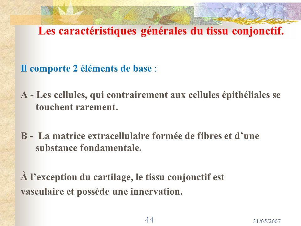 Les caractéristiques générales du tissu conjonctif. Il comporte 2 éléments de base : A - Les cellules, qui contrairement aux cellules épithéliales se