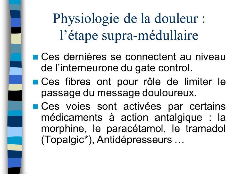 Physiologie de la douleur : létape supra-médullaire Ces dernières se connectent au niveau de linterneurone du gate control. Ces fibres ont pour rôle d