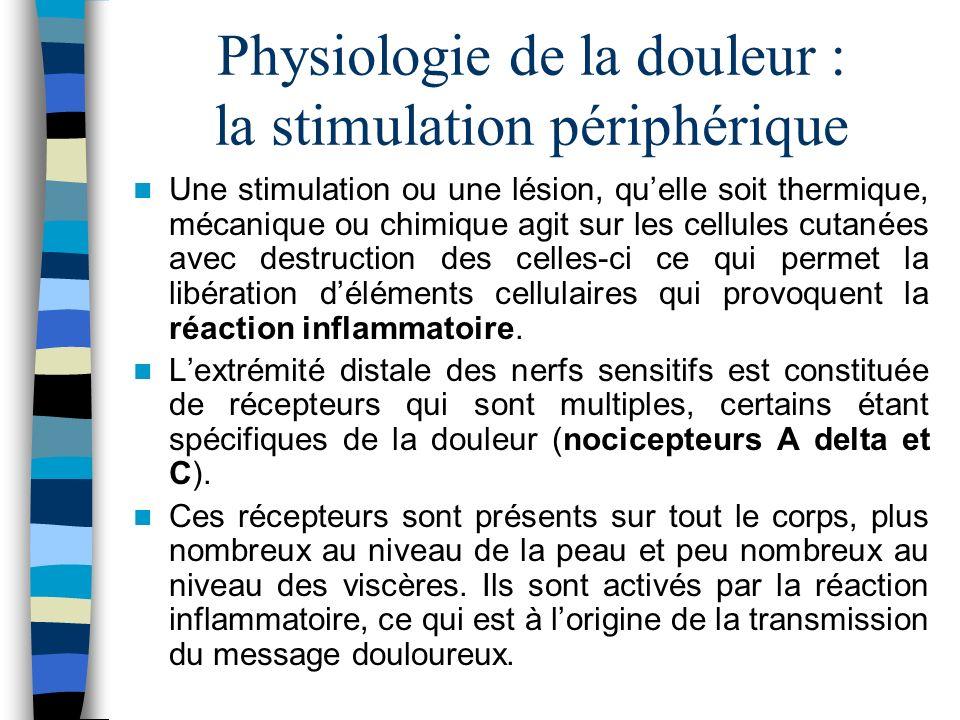 Physiologie de la douleur : la stimulation périphérique De ces nocicepteurs partent des fibres nerveuses qui transmettent la douleur.