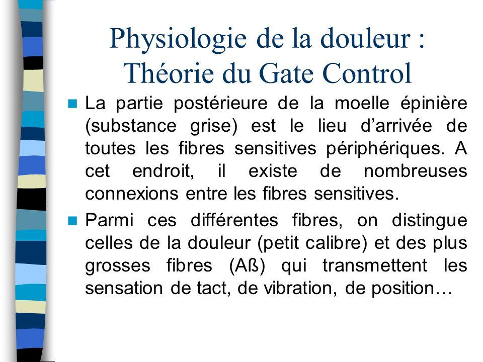 Physiologie de la douleur : Théorie du Gate Control La partie postérieure de la moelle épinière (substance grise) est le lieu darrivée de toutes les f