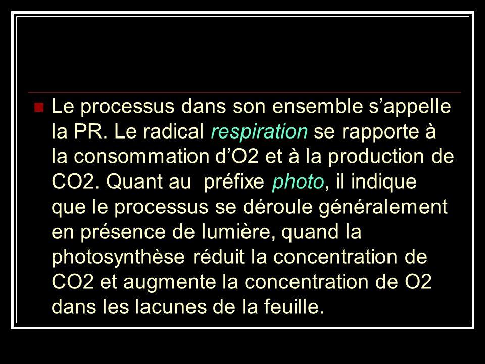 En effet, on a montré (en 1970) que chez certaines plantes (canne à sucre), le 1er composé organique formé à partir du CO 2 était une molécule en C4 (malate ou aspartate) et non l acide phosphoglycérique (APG) comme dans la photosynthèse traditionnelle (Cycle de Calvin).
