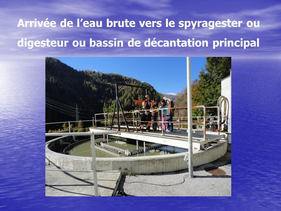 Arrivée de leau brute vers le spyragester ou digesteur ou bassin de décantation principal