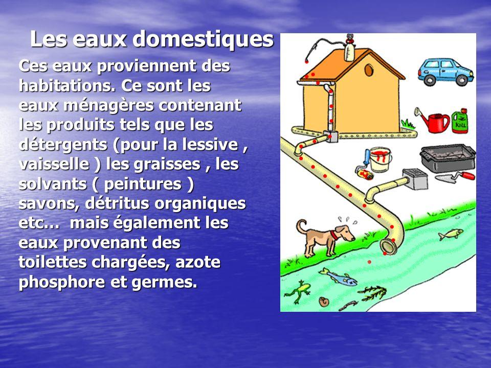 Les eaux domestiques Ces eaux proviennent des habitations. Ce sont les eaux ménagères contenant les produits tels que les détergents (pour la lessive,