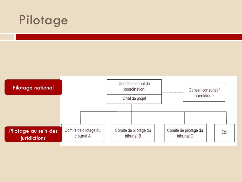 Pilotage Pilotage national Pilotage au sein des juridictions