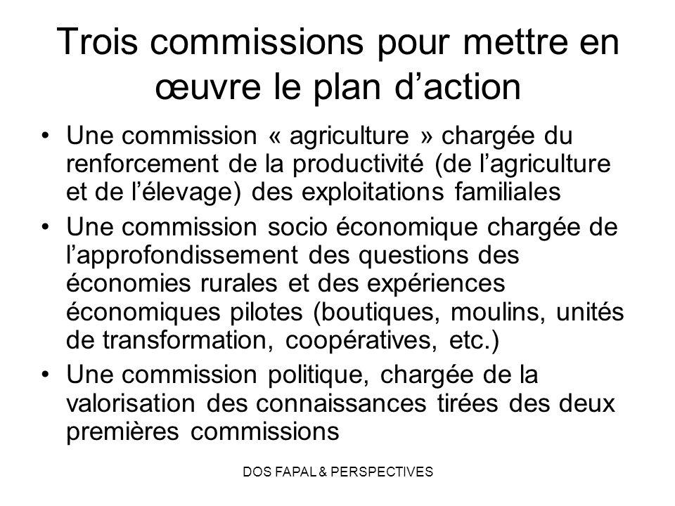 DOS FAPAL & PERSPECTIVES Trois commissions pour mettre en œuvre le plan daction Une commission « agriculture » chargée du renforcement de la productiv