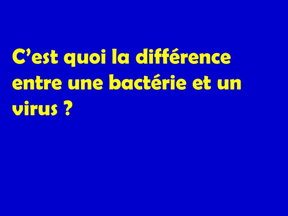 Cest quoi la différence entre une bactérie et un virus ?