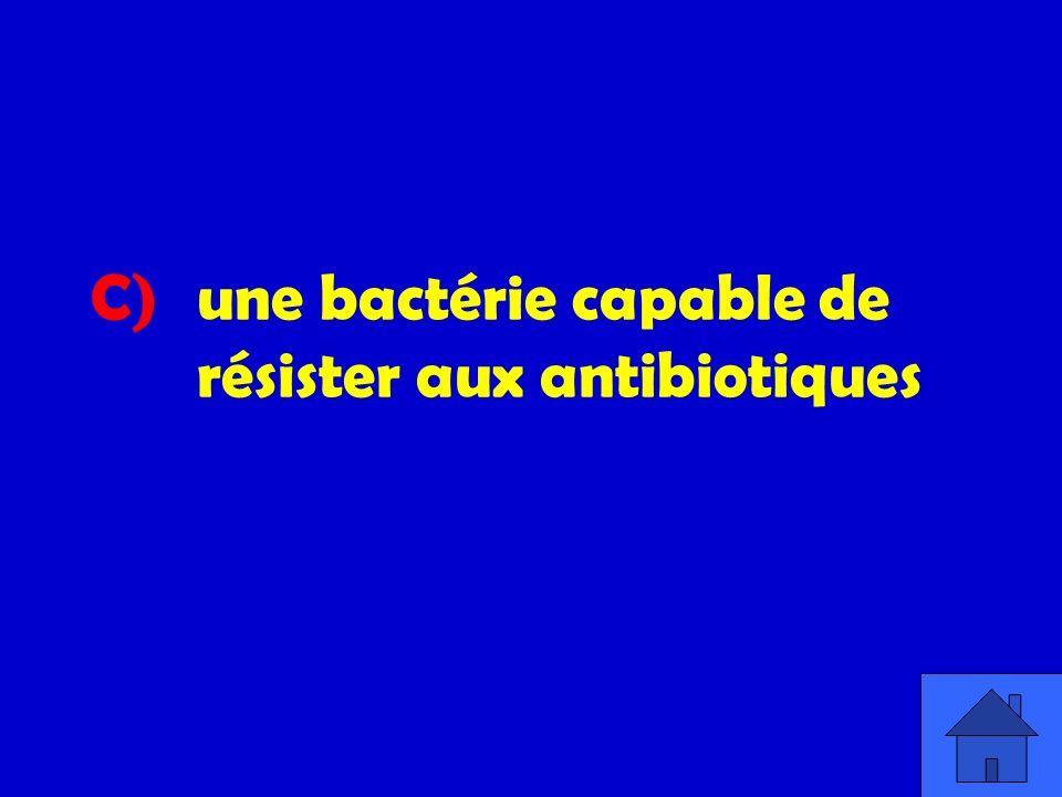 C) une bactérie capable de résister aux antibiotiques