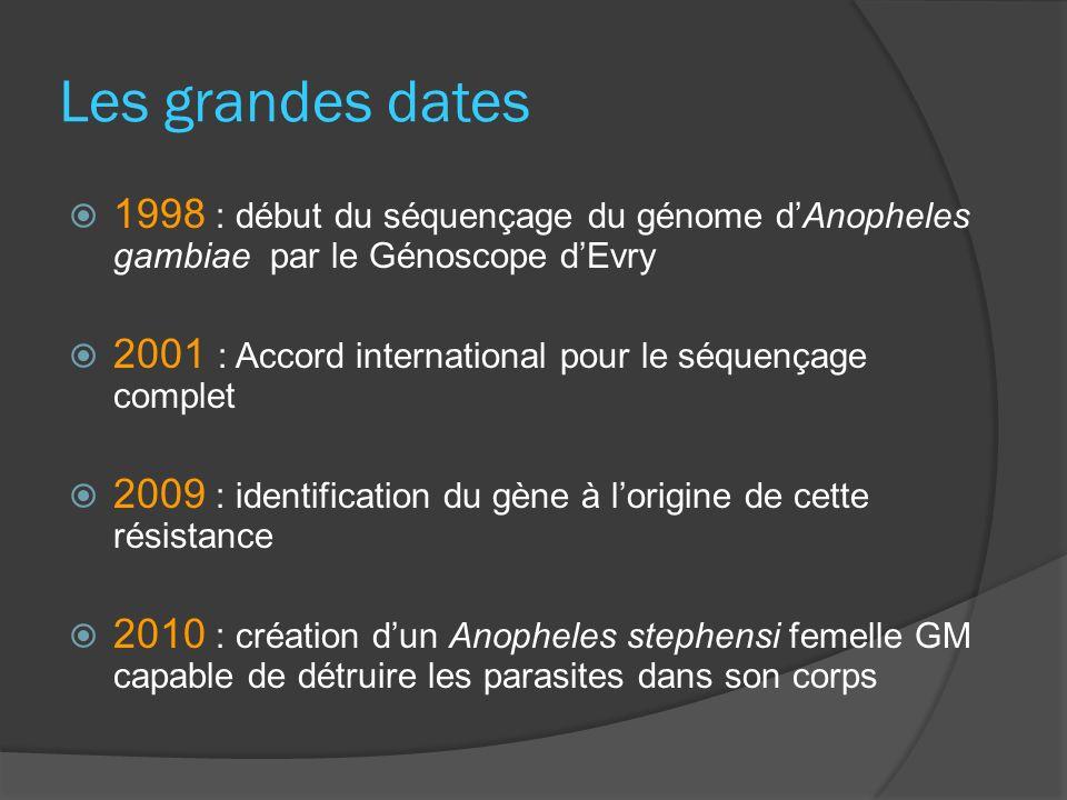 Les grandes dates 1998 : début du séquençage du génome dAnopheles gambiae par le Génoscope dEvry 2001 : Accord international pour le séquençage comple