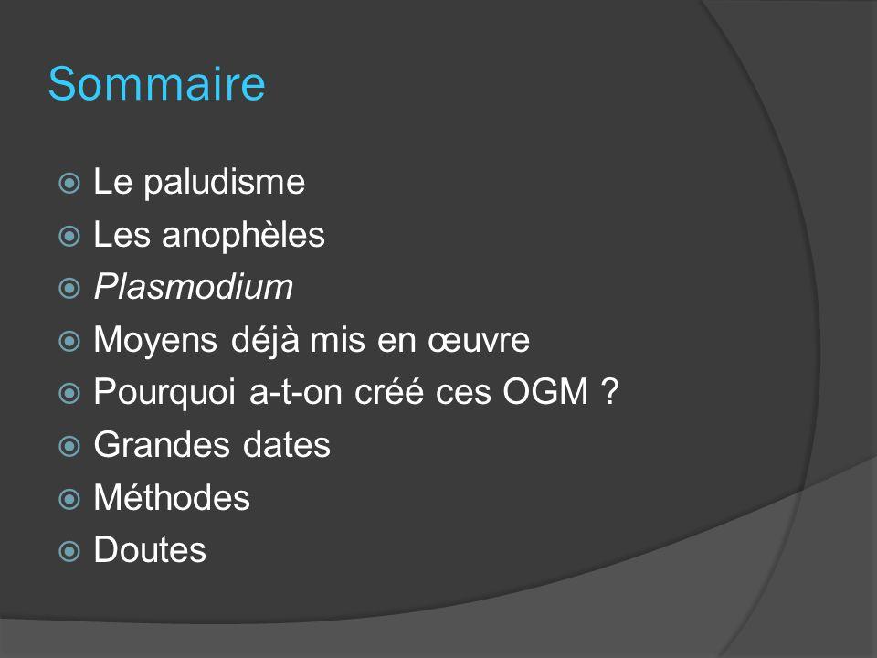Sommaire Le paludisme Les anophèles Plasmodium Moyens déjà mis en œuvre Pourquoi a-t-on créé ces OGM ? Grandes dates Méthodes Doutes