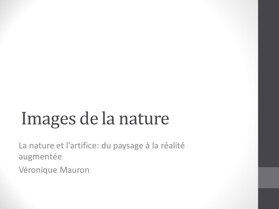 Images de la nature La nature et l artifice: du paysage à la réalité augmentée Véronique Mauron