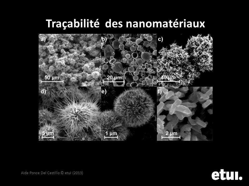 Traçabilité des nanomatériaux Aida Ponce Del Castillo © etui (2013)
