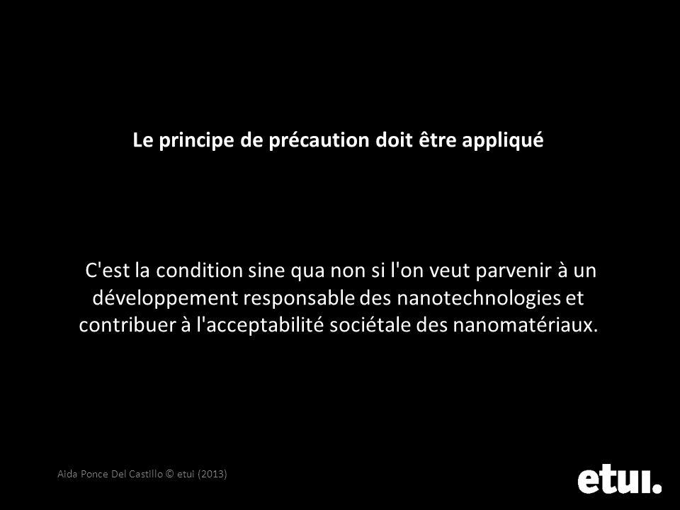 Le principe de précaution doit être appliqué C'est la condition sine qua non si l'on veut parvenir à un développement responsable des nanotechnologies