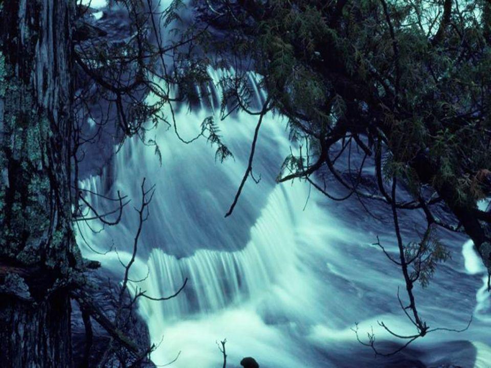 Écoute ces concerts donnés par la Nature; Les refrains de la brise à travers les roseaux Comme ceux de loiseau qui cherche sa pâture Et ces bruits du torrent où bouillonnent les eaux!