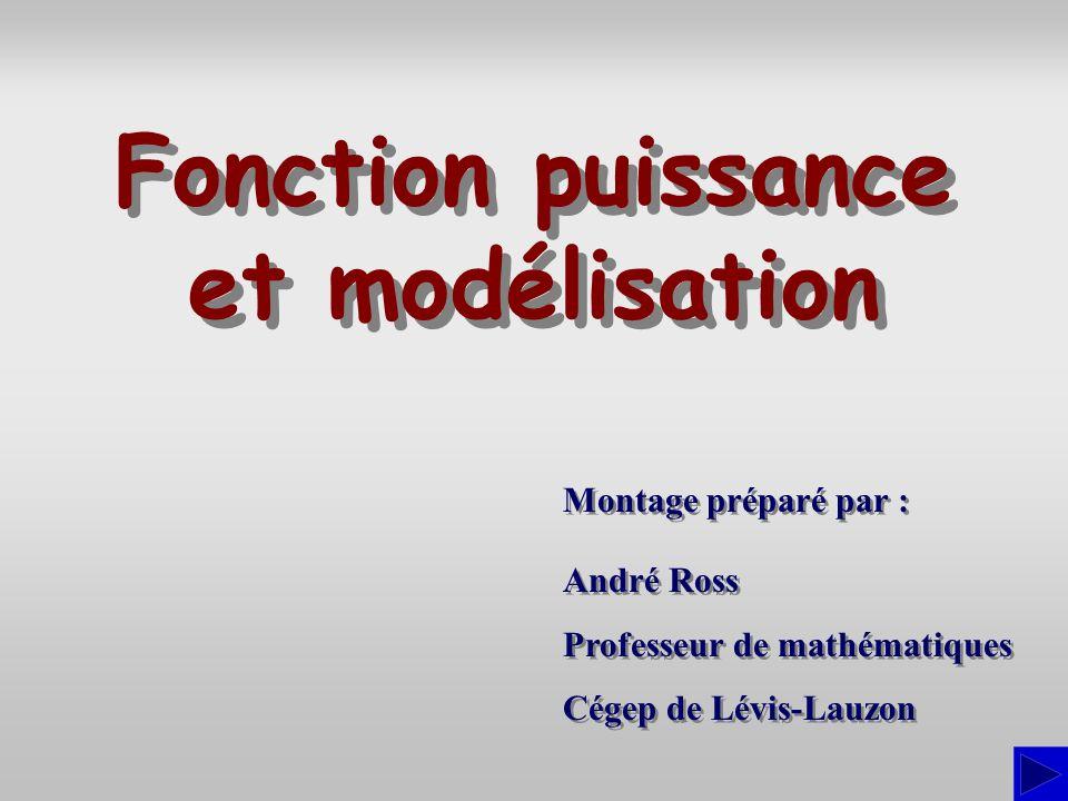 Montage préparé par : André Ross Professeur de mathématiques Cégep de Lévis-Lauzon André Ross Professeur de mathématiques Cégep de Lévis-Lauzon Foncti