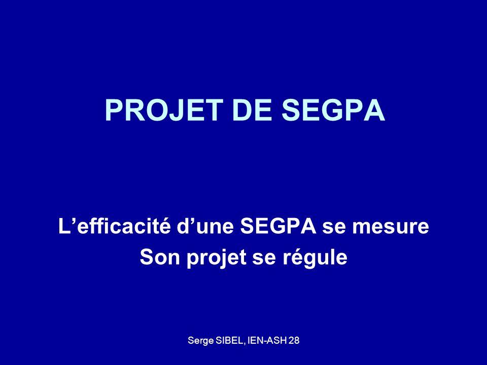 Serge SIBEL, IEN-ASH 28 PROJET DE SEGPA Lefficacité dune SEGPA se mesure Son projet se régule