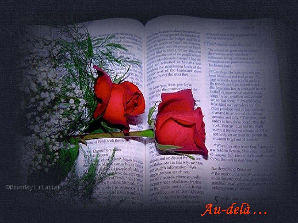 Au-delà … De notre histoire Seule dans le noir Je ne crains plus ton absence Je te retrouve tous les soirs Dans mes rêves et mes errances …