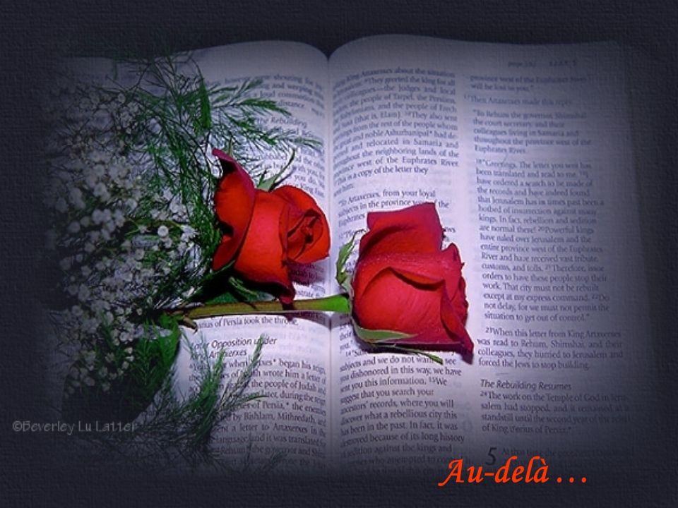 Au-delà … De toute éternité Jamais je ne toublierai À ton âme la mienne est tressée Et toujours Du bout de mes doigts Je taimerai …