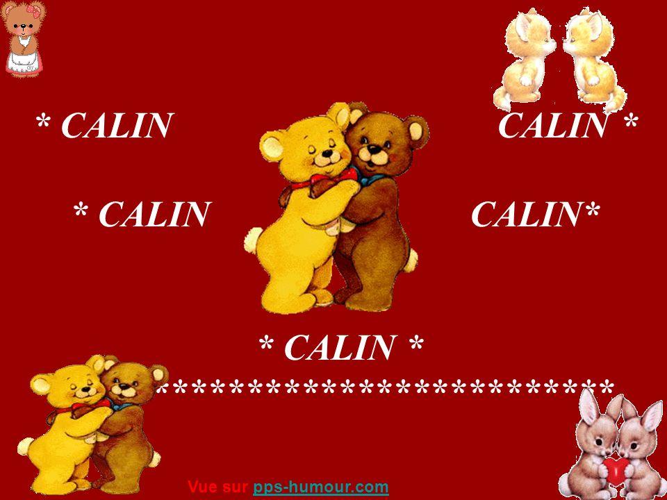 * CALIN CALIN * * CALIN * ****************************** Vue sur pps-humour.compps-humour.com