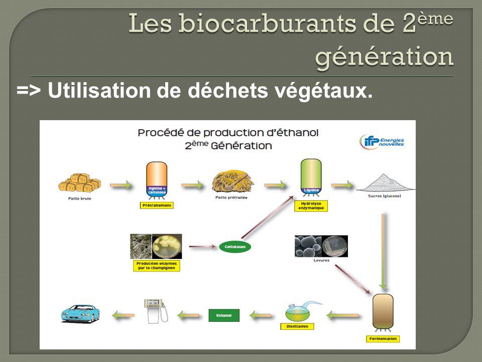 => Utilisation de déchets végétaux.