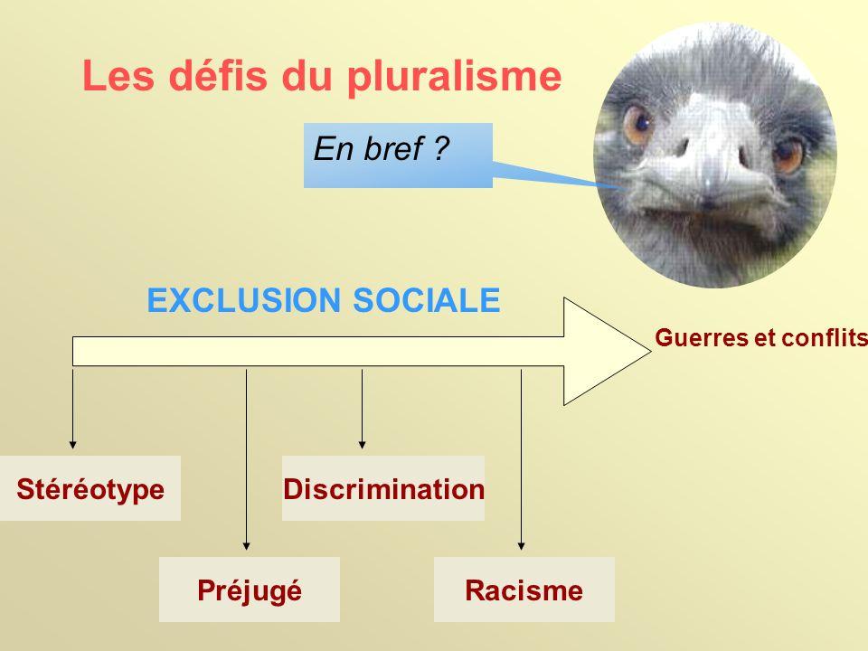 Les défis du pluralisme Sociales: Ex: Difficulté de trouver un logement Un des groupe les plus touchés.