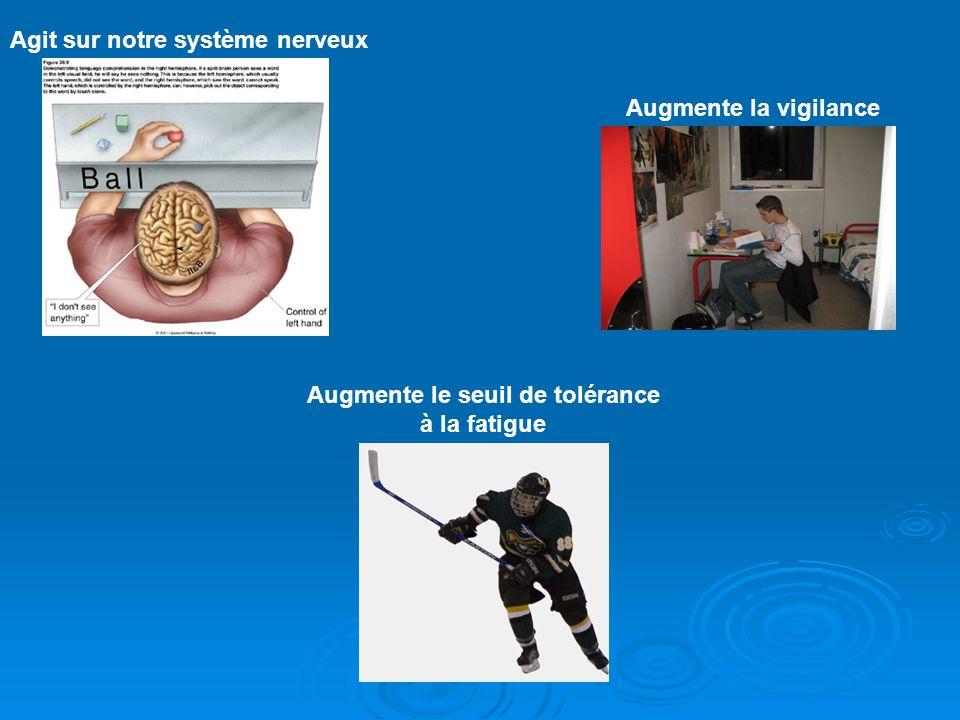 Agit sur notre système nerveux Augmente la vigilance Augmente le seuil de tolérance à la fatigue