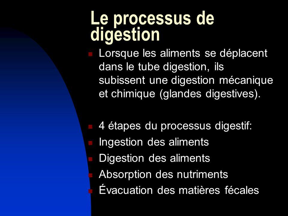 Le processus de digestion Lorsque les aliments se déplacent dans le tube digestion, ils subissent une digestion mécanique et chimique (glandes digestives).