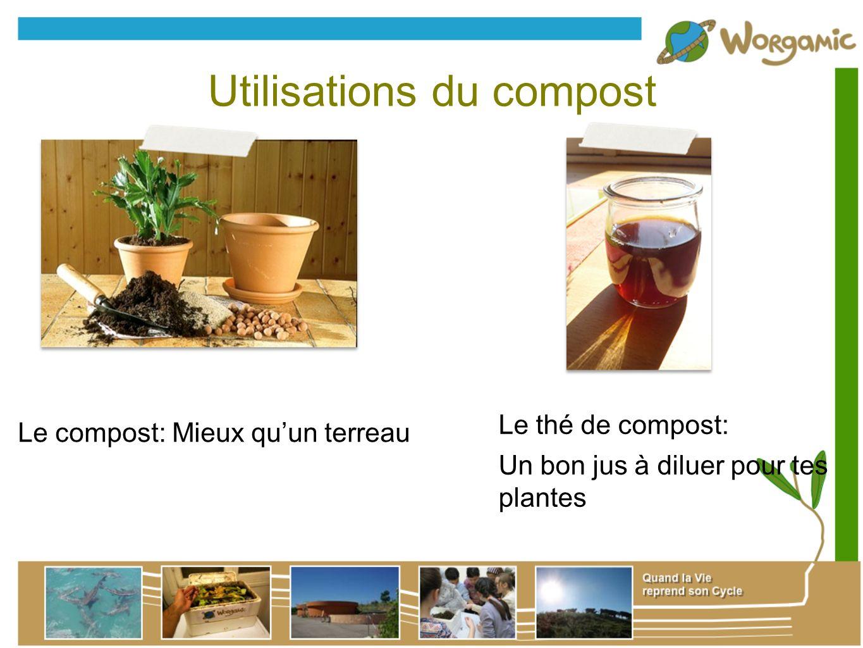 Utilisations du compost Le compost: Mieux quun terreau Le thé de compost: Un bon jus à diluer pour tes plantes